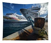 Norwegian Sky Carnival Sensation And Royal Caribbean Majesty Tapestry