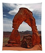 Not The Usual Delicate Arch View Tapestry