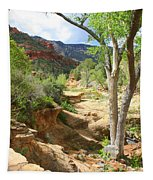 Over Slide Rock Tapestry
