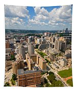 Oakland Pitt Campus With City Of Pittsburgh In The Distance Tapestry