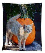 October Kitten #1 Tapestry