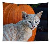 October Kitten #3 Tapestry