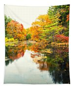 Octobers Paintbrush Tapestry
