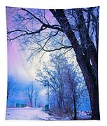 Of Dreams And Winter Tapestry