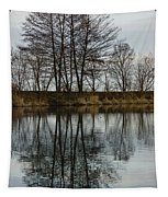 Of Mirrors And Trees Tapestry