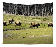 Oh Give Me A Home Where The Buffalo Roam Tapestry