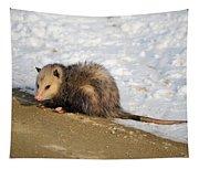 Oh Possum Tapestry