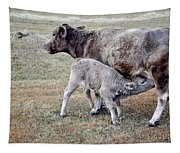 Oil Paint Look Cow And Calf Portrait Usa Tapestry
