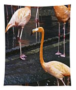 Oil Painting - Focus On A Single Flamingo Inside The Jurong Bird Park Tapestry