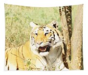 Oil Painting - An Alert Tiger Tapestry