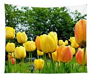 Okanagan Valley Tulips Tapestry