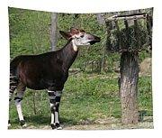 Okapi Tapestry