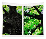 Old Barks Diptych - Deciduous Trees Tapestry