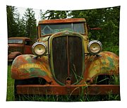 Old Cars Left To Decorate The Weeds Tapestry
