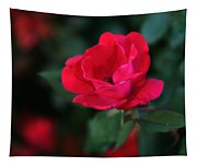 Old Fashioned Rose Tapestry