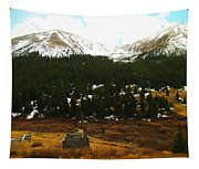 Old Homestead In The Colorado Mountains Tapestry