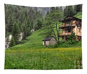 Old House On The Green Field Tapestry