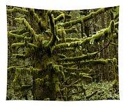 Old Timer Tapestry