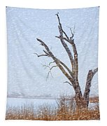 Old Tree In Winter Tapestry