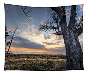 Old Tree Sunset Over Oyster Bay Tapestry