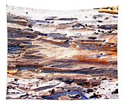 Old Weathered Log On The Sea Shore Tapestry