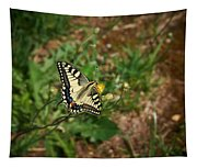 Old World Swallowtail. Montorfano. Cologne Tapestry