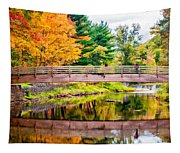 Ole Bull State Park Paint Tapestry