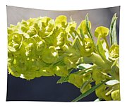 Olive Fluorescence Tapestry