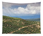 Olive Trees In A Field, Ubeda, Jaen Tapestry
