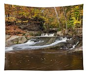 Olmstead Falls Tapestry