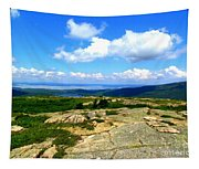 On A Mountain In Maine Tapestry