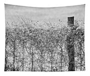 On The Fence Bw Tapestry
