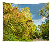 On The Road To Autumn Tapestry