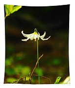 One Lily Almost Alone Tapestry