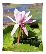 One Pink Water Lily Tapestry