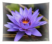 One Purple Water Lily With Vignette Tapestry