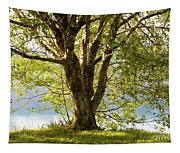 One Spring Tree Tapestry