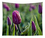 One Tulip Among Many Tapestry