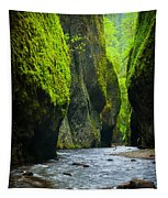 Oneonta River Gorge Tapestry