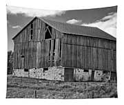 Ontario Barn Monochrome Tapestry