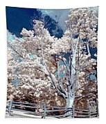 Ontario Summer Color Infrared Tapestry