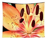 Orange And Pink Flower Tapestry