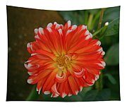 Orange And White Tapestry