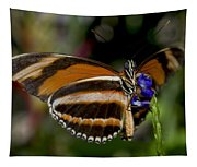 Orange Banded Butterfly Tapestry