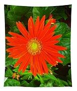 Orange Gerbera Daisy Tapestry