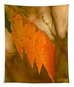 Orange Leaves Of Fall Tapestry
