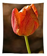 Orange/yellow Tulip Tapestry