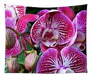 Radiant Orchid  Tapestry