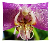 Orchid 4 Tapestry