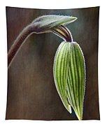 Orchid Bud Tapestry